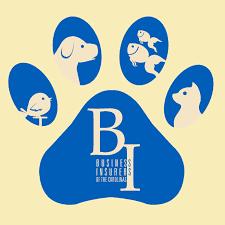 business-insurers-of-carolinas-dog-walking3