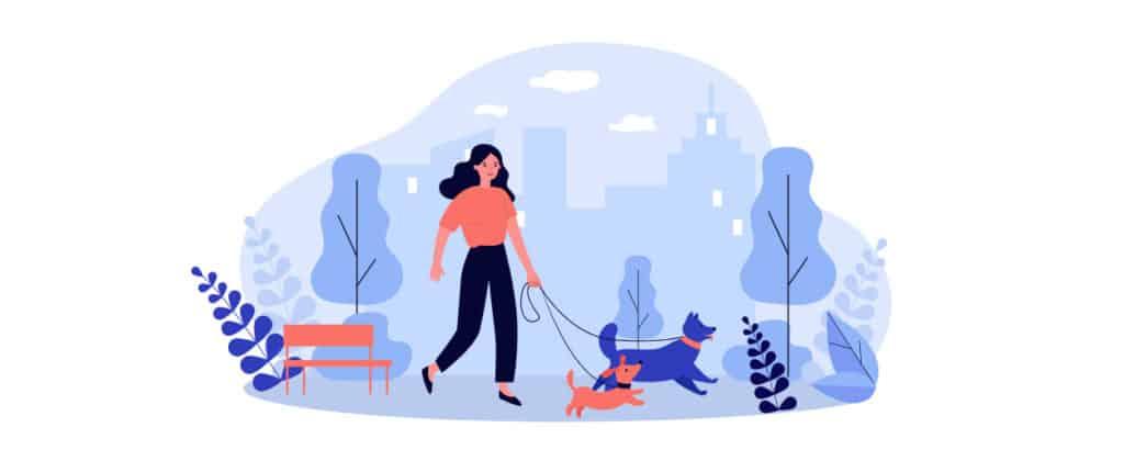 risks of starting a dog walking business
