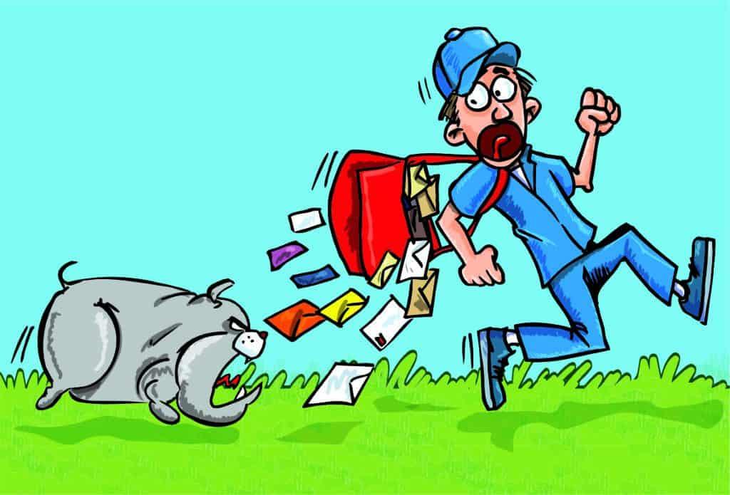 why dogs bite postmen