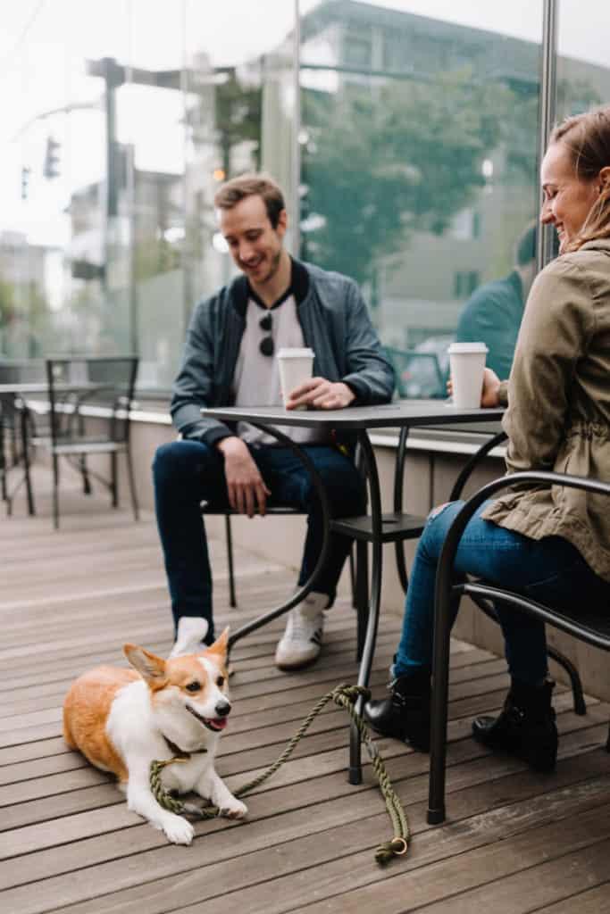 dog friendly restaurants nyc