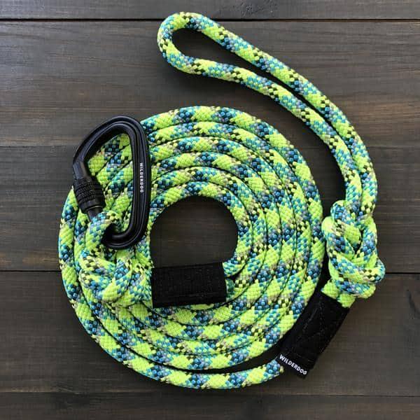best dog leash for dog walkers